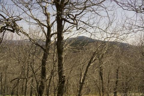 Clingman's Dome