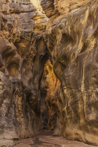 Willis Canyon