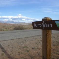 Burro Wash Trailhead