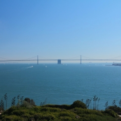 Other Bridges