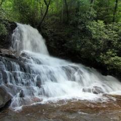 Laurel Falls Top