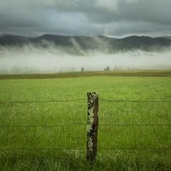 Fencing Fog