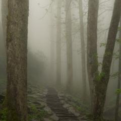 Trail to Chimneys