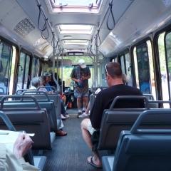 Zion Bus