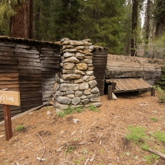 Tharp's Log