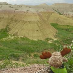 Badlands - Yellow Mounds